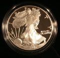 2006 Gem Proof Silver Eagle Dollar Singles